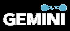 Gemini SBS